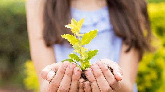 actividades del medioambiente para niños
