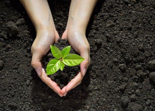 productos biodegradables